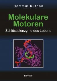 Molekulare Motoren